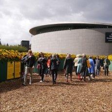 Van Gogh Sunflower Labyrinth 07