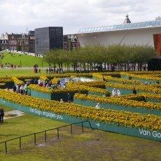 Van Gogh Sunflower Labyrinth 14
