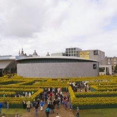 Van Gogh Sunflower Labyrinth 16