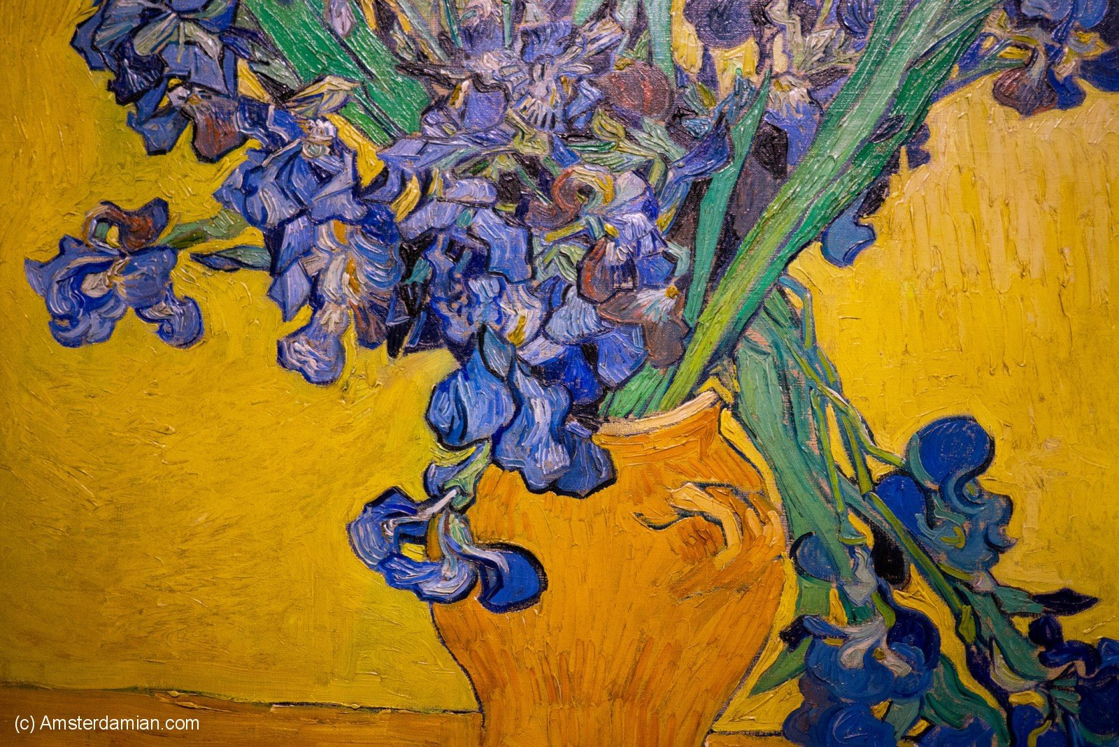 Van gogh museum amsterdamian vase with irises reviewsmspy