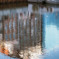 Water reflections 22