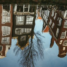 Water reflections 23