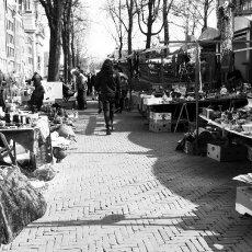 Among stalls