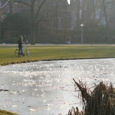 Frozen lakes Vondelpark 11