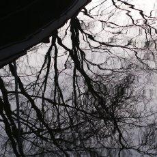 Winter landscape 04