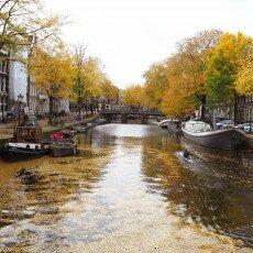 Amsterdam in yellow coat 01
