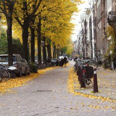 Amsterdam in yellow coat