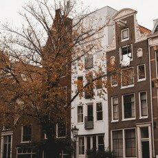 Amsterdam in yellow coat 13