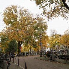 Amsterdam in yellow coat 28