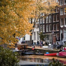 Amsterdam in yellow coat 25