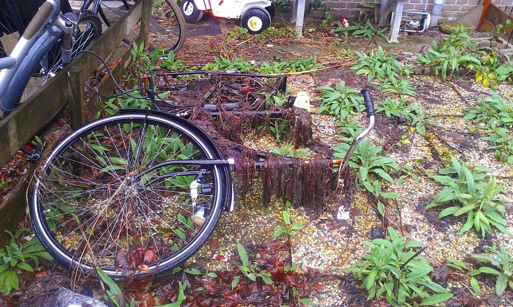 Captain Barbossa's Bicycle