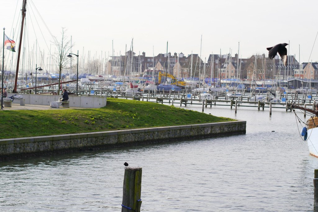 The harbour in Hoorn 03