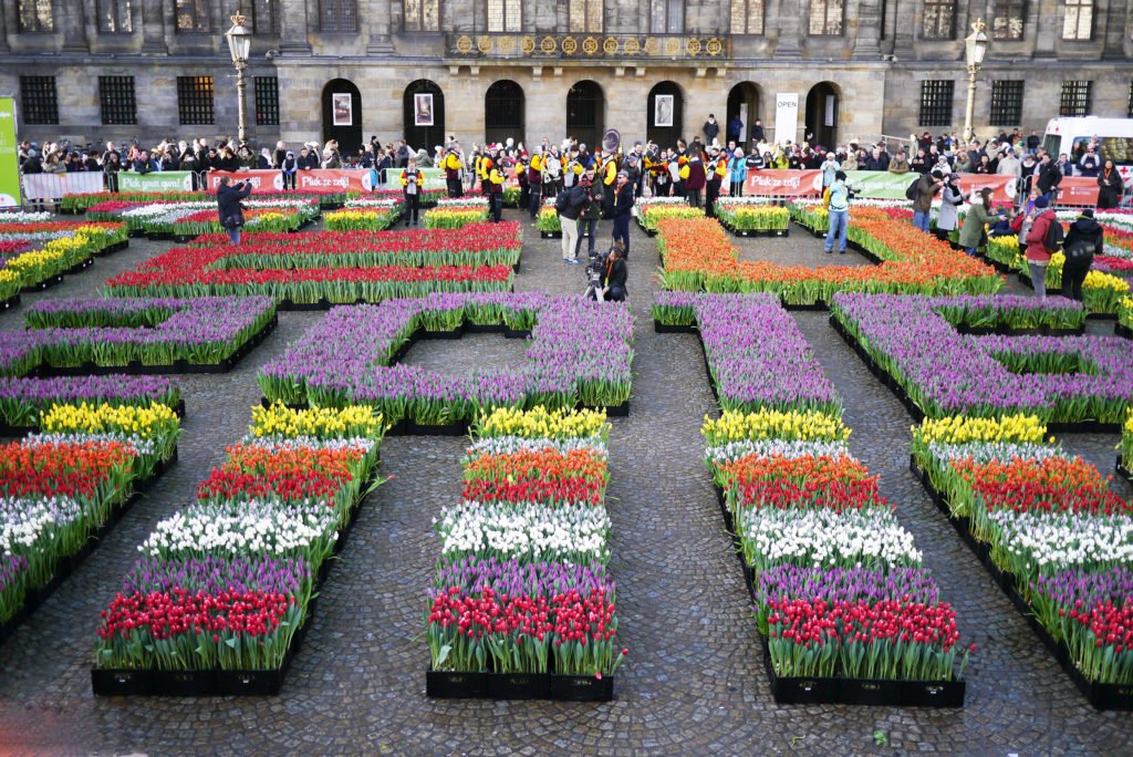 National Tulip Day in Dam Square
