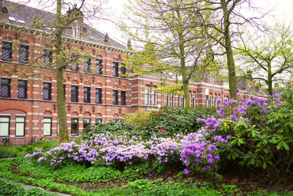 Springtime in Amsterdam 04