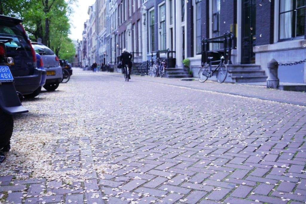Springtime in Amsterdam 17