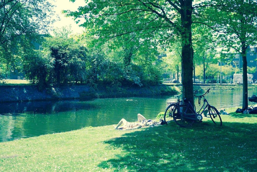 Springtime in Amsterdam 18