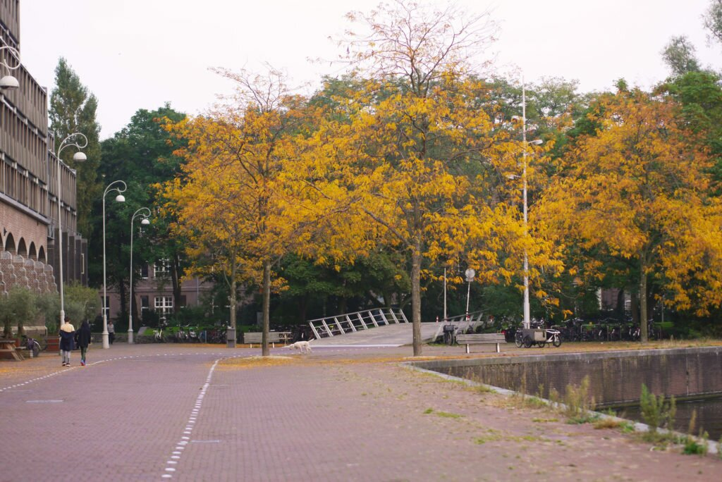 Autumn in Amsterdam, Entrepotdok 10