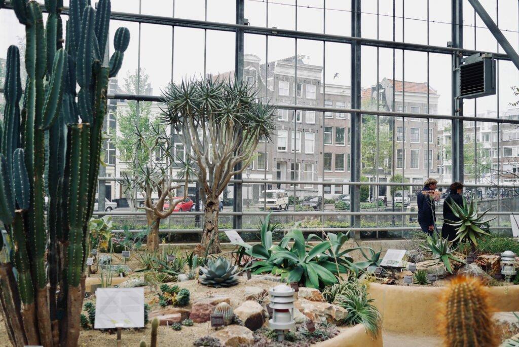 Hortus Botanicus 10