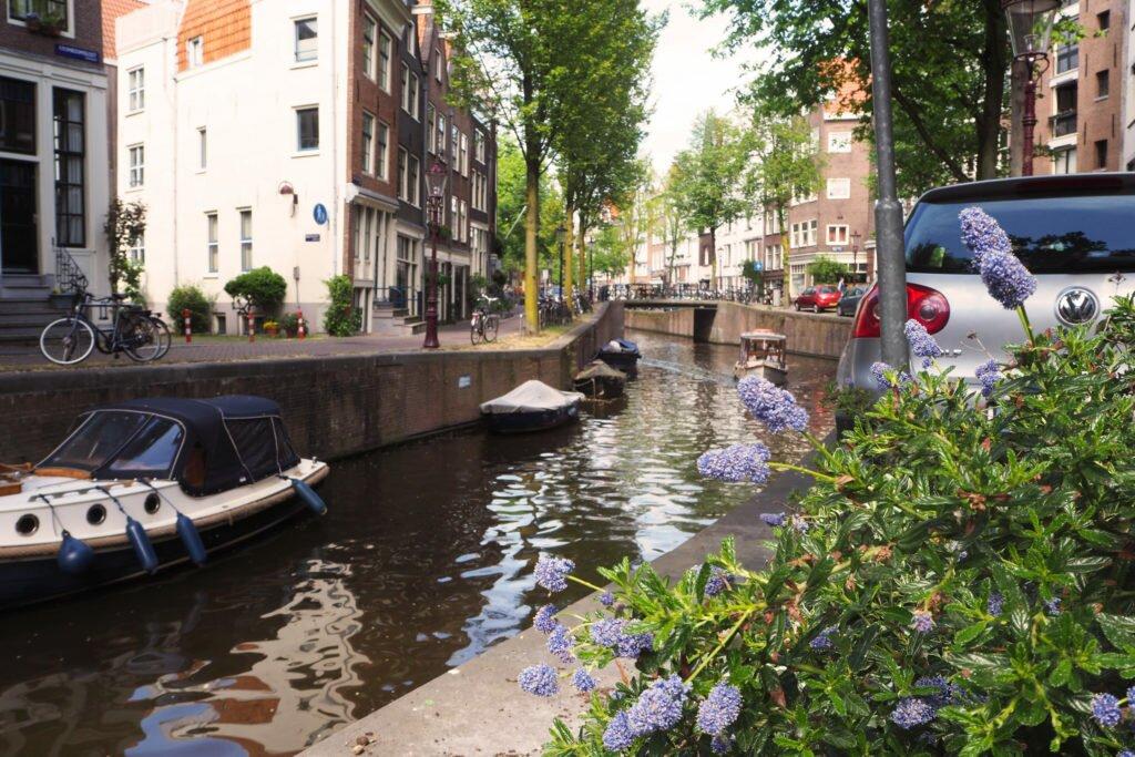 Sunny days in Amsterdam 02
