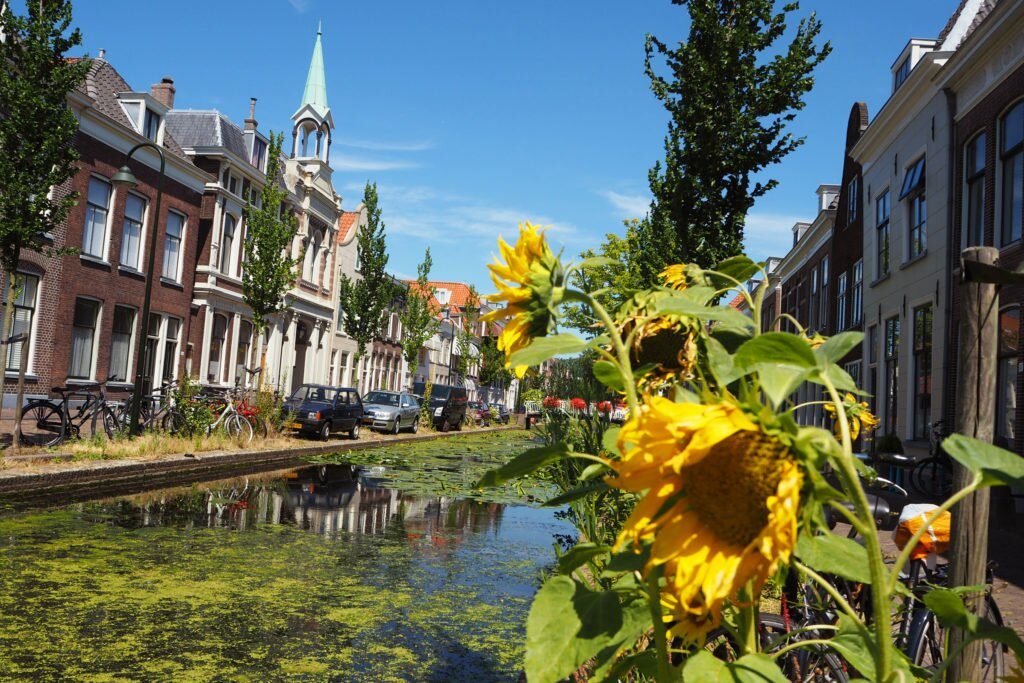 Street in Delft