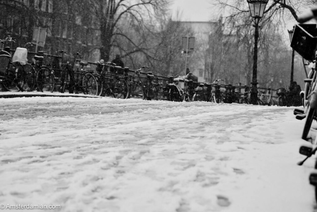 Winter in black and white 06