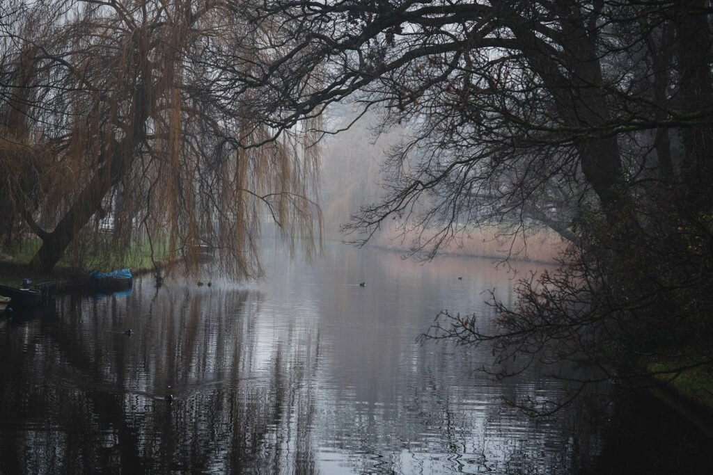 Misty day in Alkmaar 13
