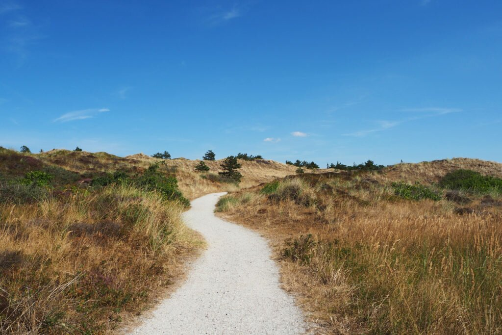 Trip to Texel Island