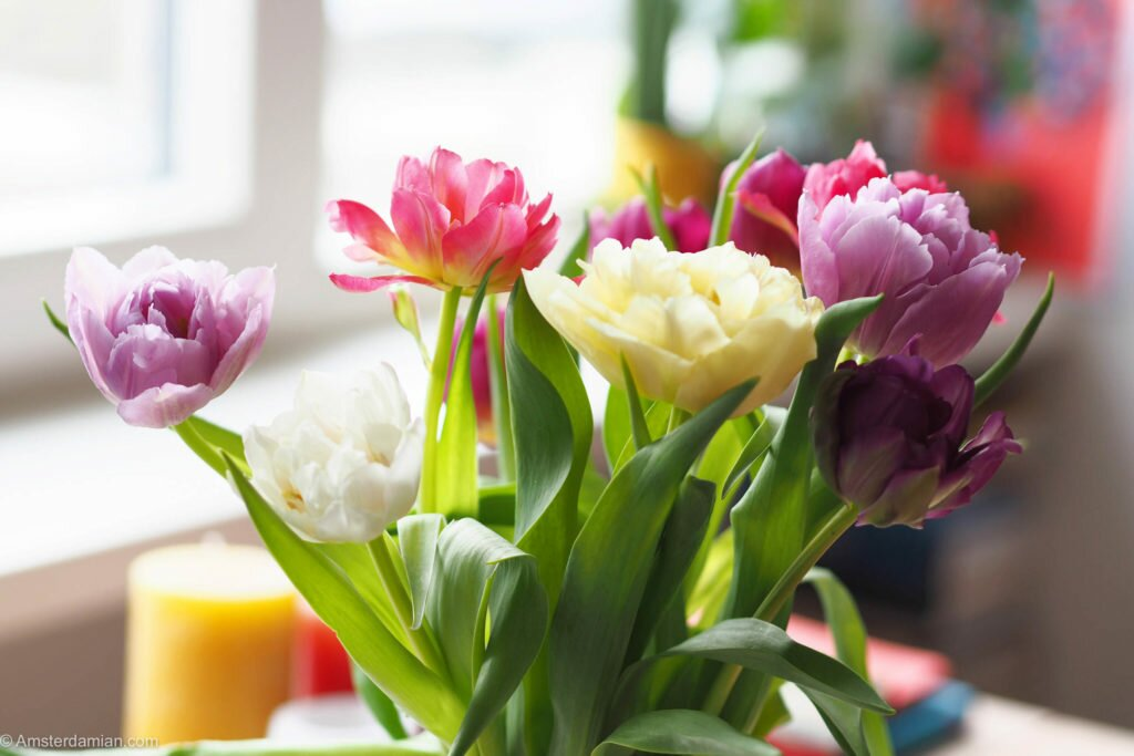 Spring in my home 02