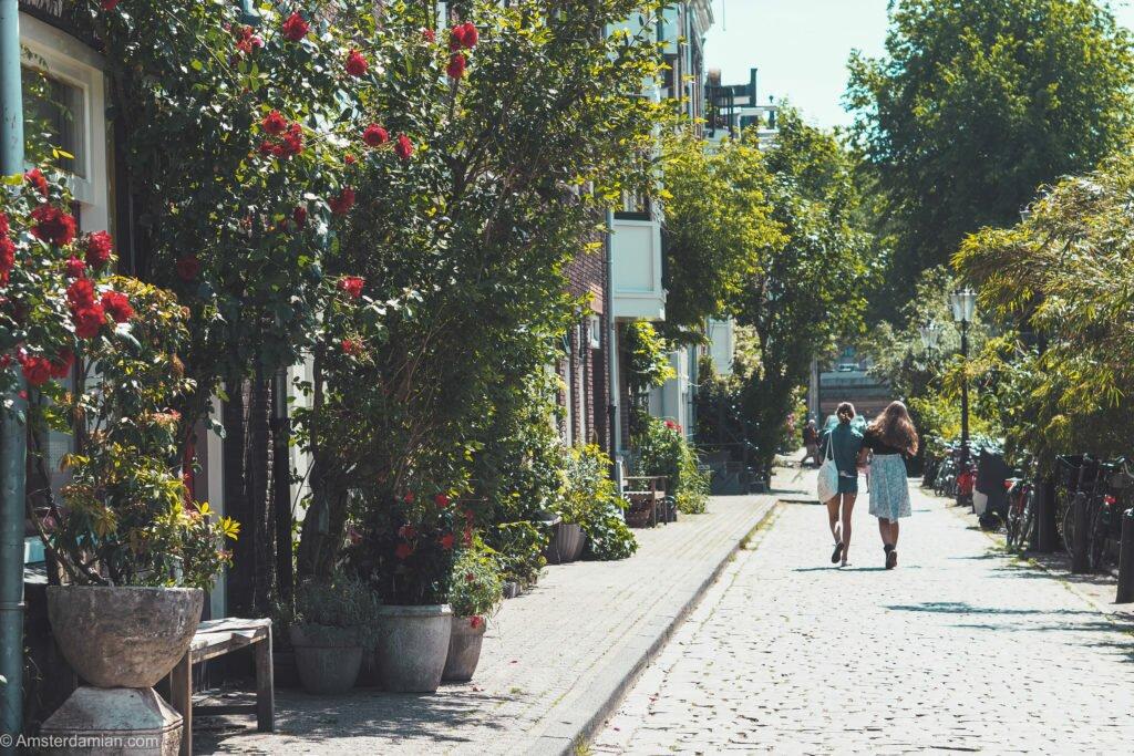 Streets of Prinseneiland 01