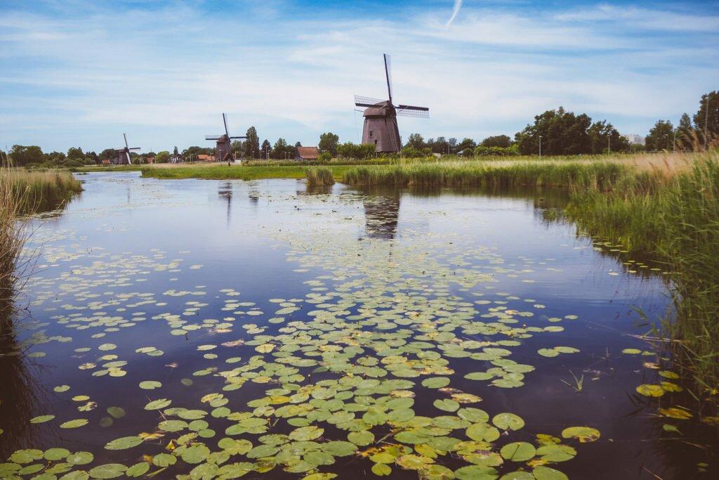 Windmills at Oudorperhout