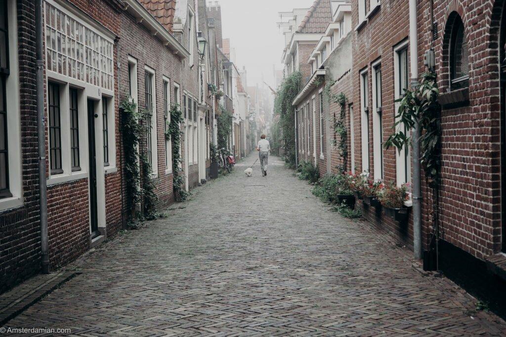 Misty summer morning Alkmaar 12