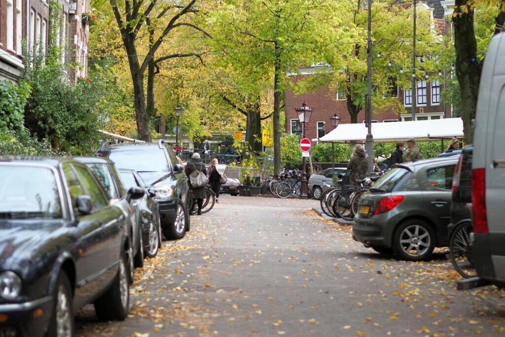 Moody autumn day 11