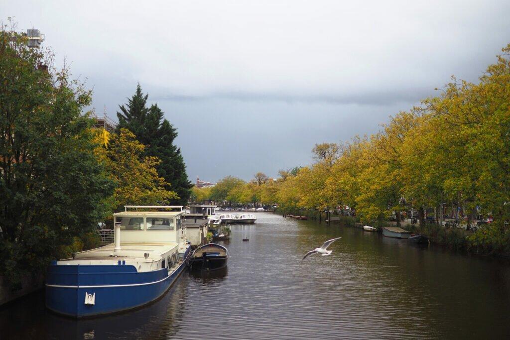 Moody autumn day 15