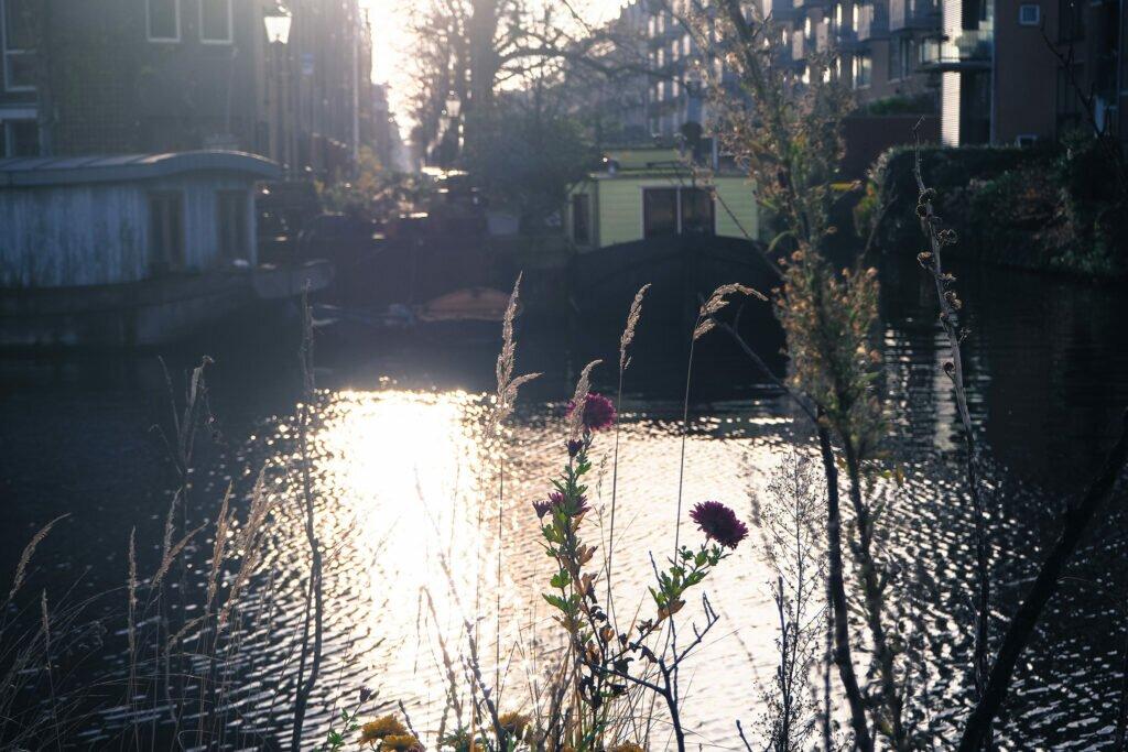 Amsterdam in lockdown 04
