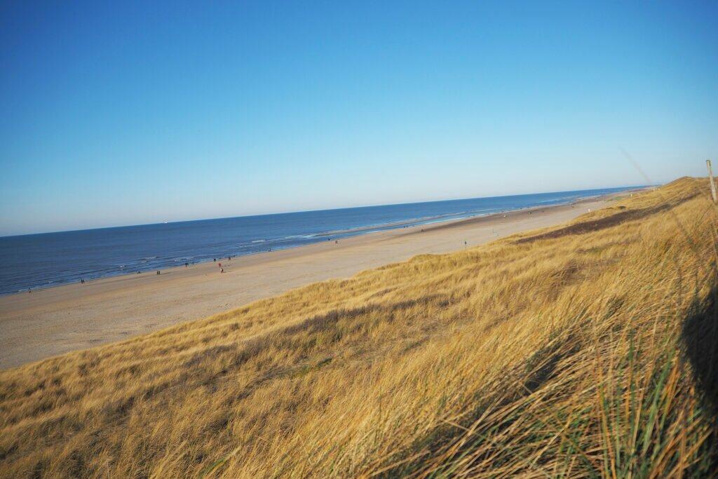 Sand dunes North Holland