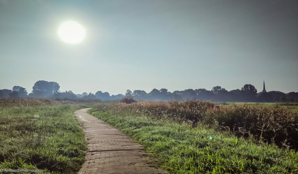 Early morning in the polder
