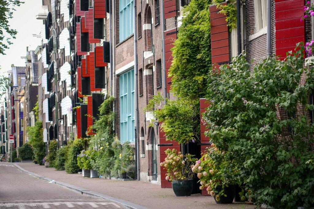 Amsterdam green streets