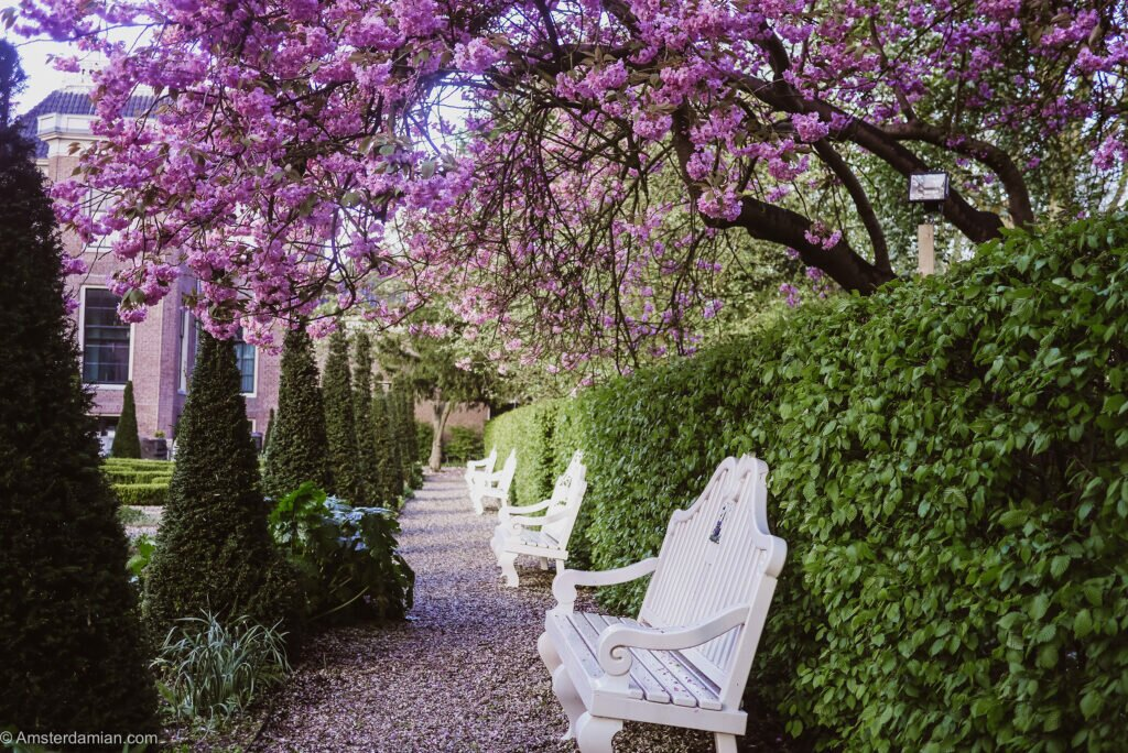 Frankendael garden
