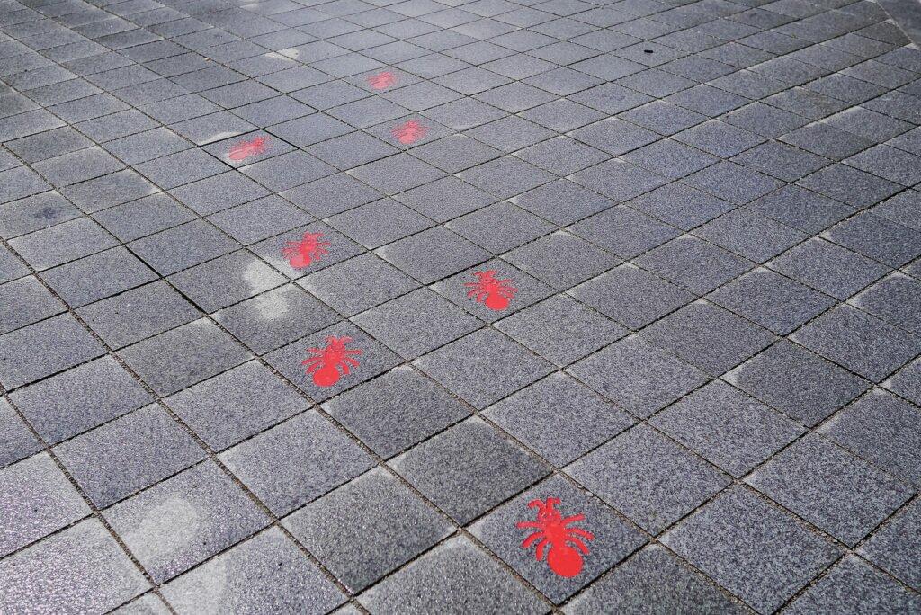 Ants on the sidewalk, Breda