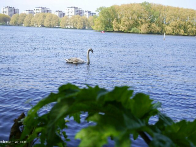 Water and fresh air in the city – Sloterplas