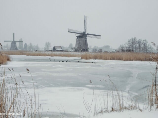 Snow and windmills