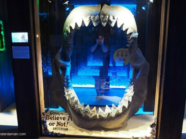Weird things happening in Amsterdam:  Ripley's Believe it or Not!