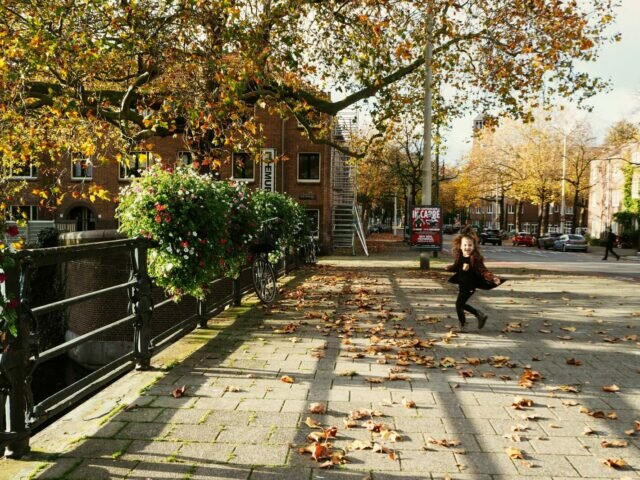Amsterdam neighbourhoods: an autumn day in Stadionbuurt