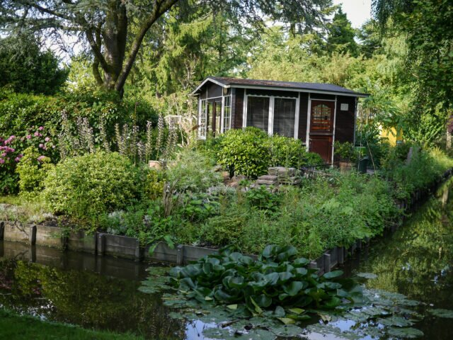 Amsterdam gardens. Spend the summer surrounded by flowers