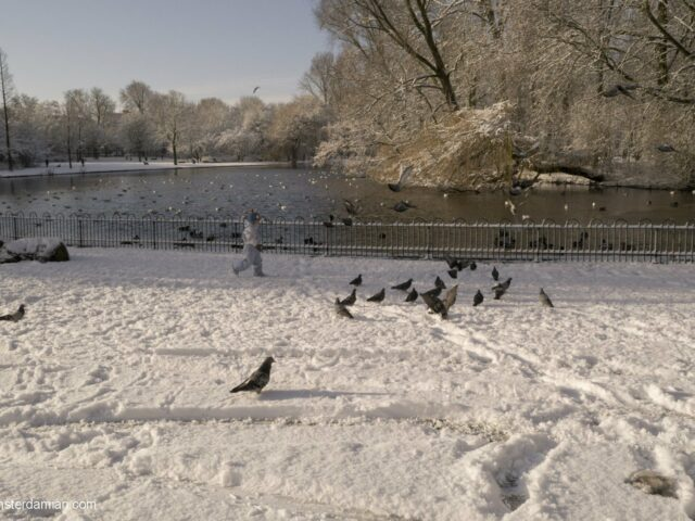 Winter Sunday morning in the park