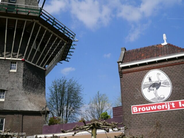 A beer at the windmill: Brouwerij 't Ij