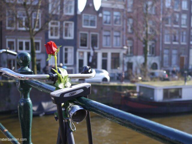 #NoFilter Amsterdam