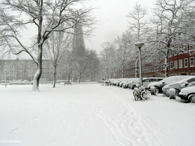 White winter in Amsterdam